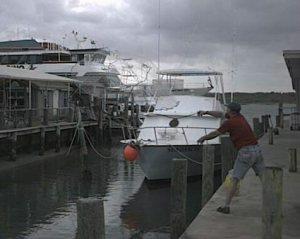 frank inlet harbor 5-16-02 cast net